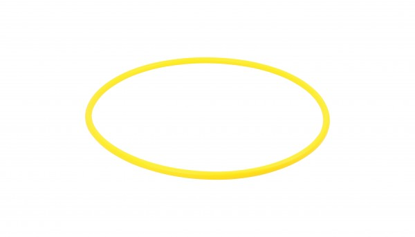 Cerchio Hula Hoop